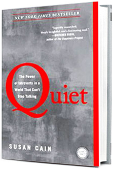 Quiet Introvert Book